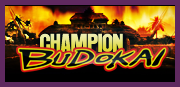 Champion Budokai Tournoi Ouest